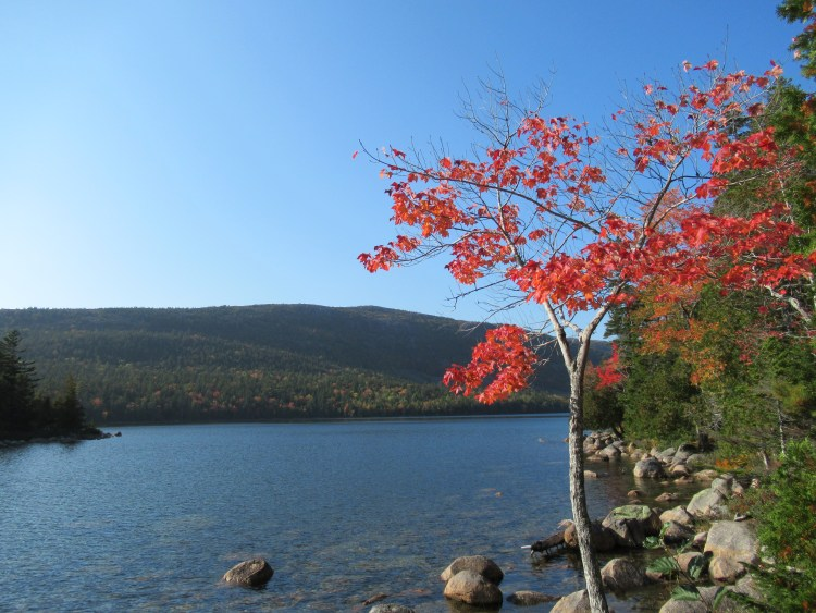 Jordan Pond Acadia National Park - Foliage