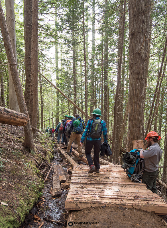 Boardwalk of fresh cedar at Mt.Rainier National Park