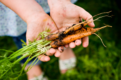 carrots, healthy eating, healthy diet, whole foods plant based, yoga