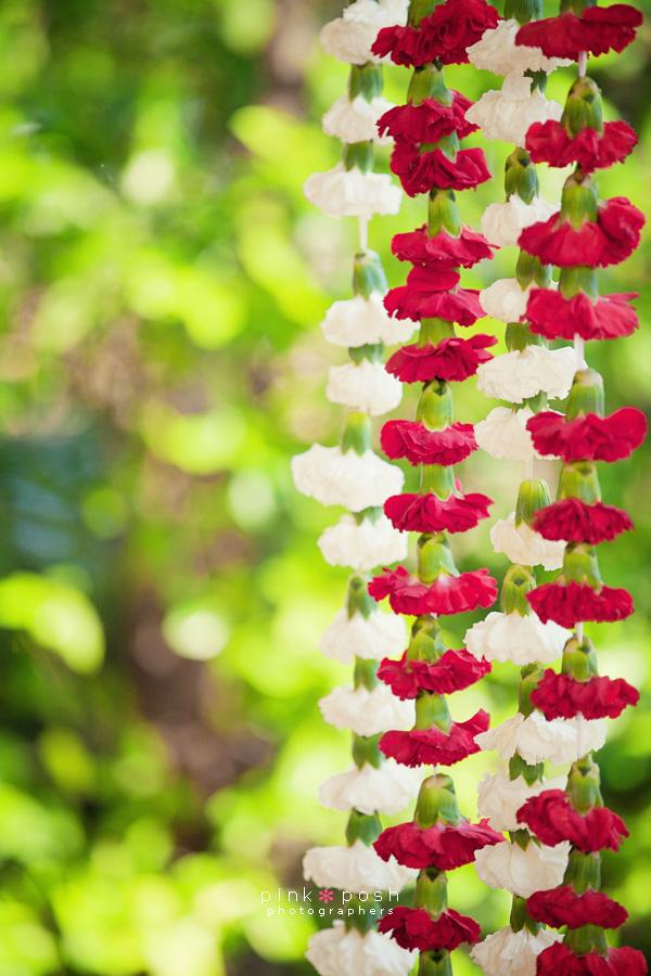 Mundap decor- carnations