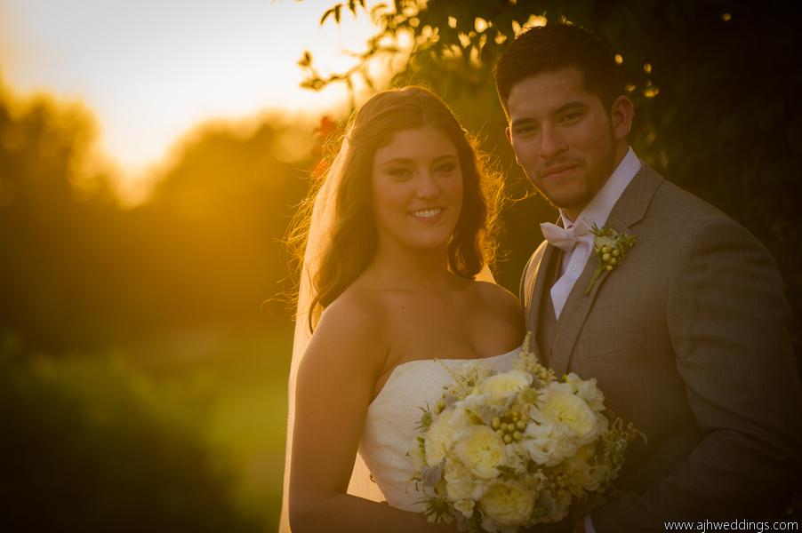 Summer bride- gorgeous garden roses