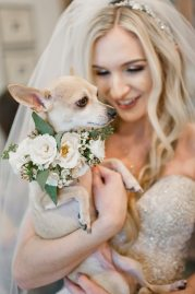 Bride holding dog with floral dog collar.