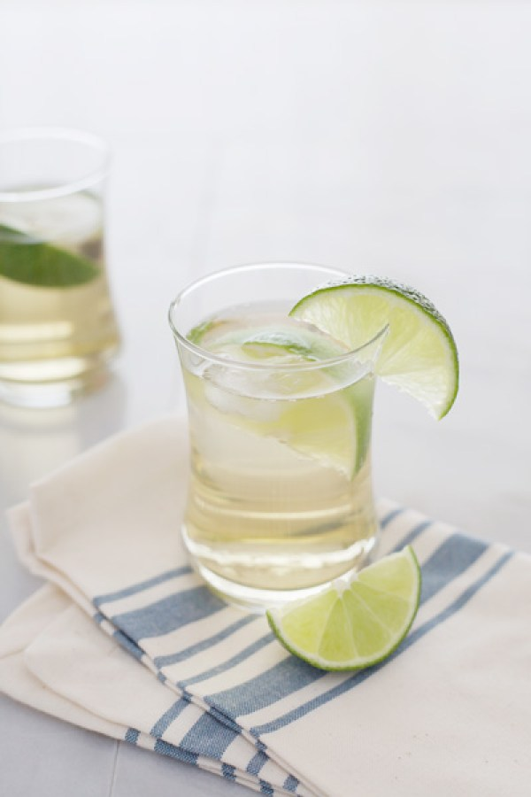 Gin and Tonic   BourbonandHoney.com
