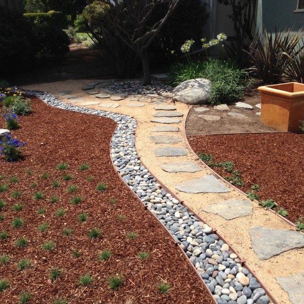 start xeriscaping with backyard