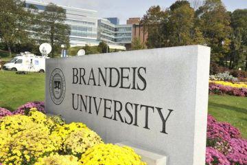 Bourse gratuite aux Etats-Unis à l'université Brandeis en 2018