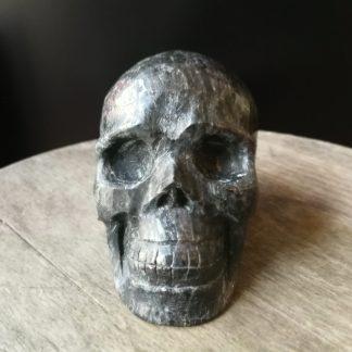 crâne Astrophyllite