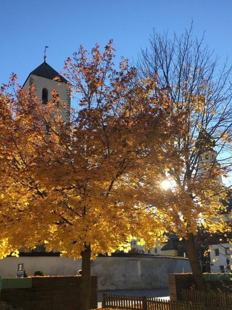 A golden tree