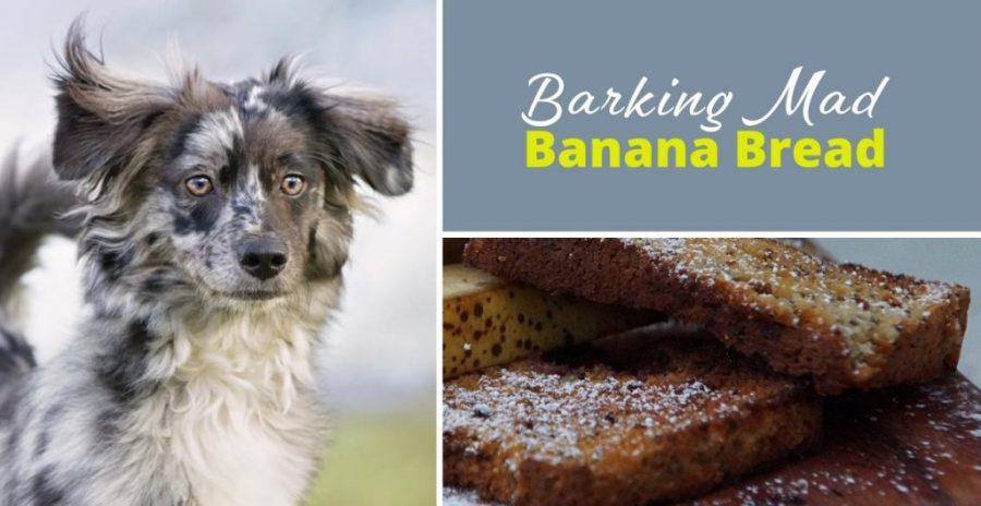 barking mad banana bread
