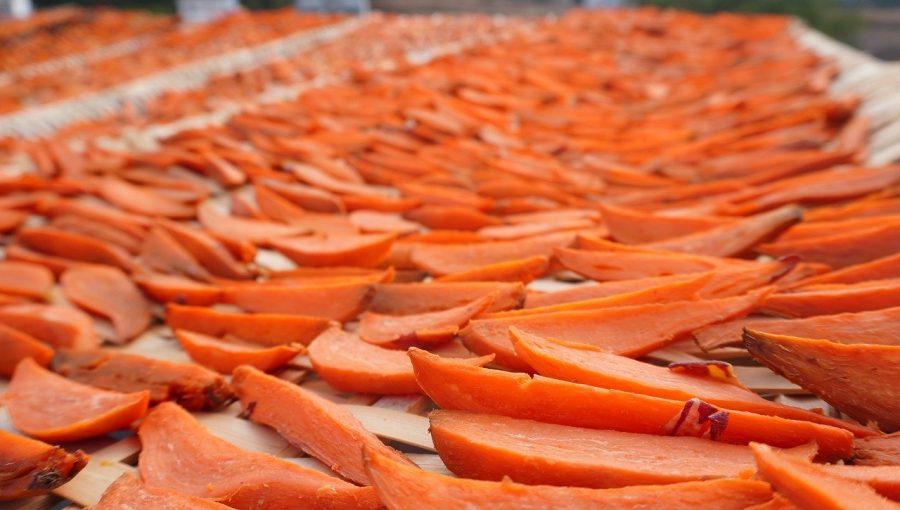 dried sweet potato bits