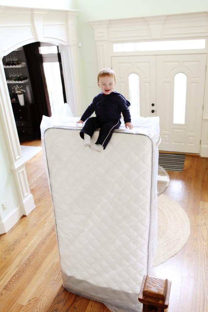 Big Boy Bed Bower Power