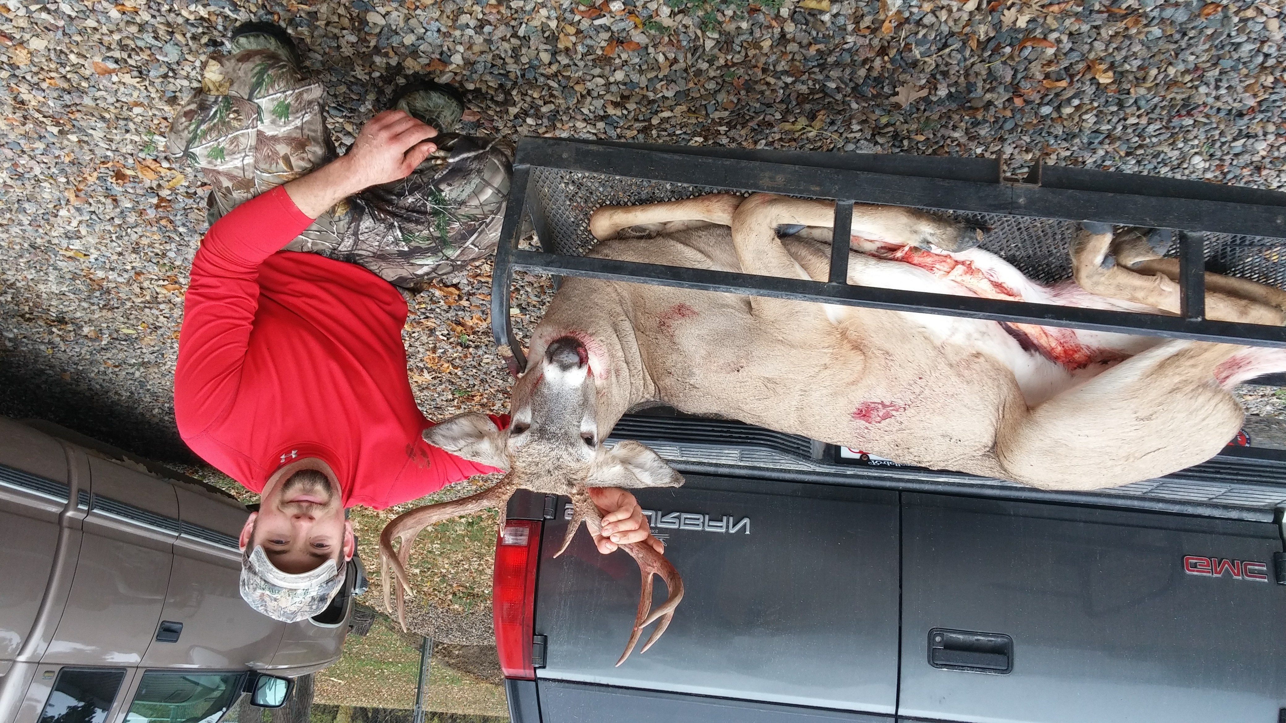 compound bow diagram 3 phase star delta starter wiring killzone - fall in whitetail deer by andrew hogenson   bowhunting.com