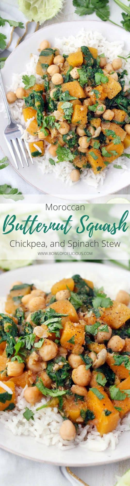 Moroccan Butternut Squash, Chickpea, and Spinach Stew | This spicy, healthy, vegan stew is packed full of butternut squash, chickpeas, spinach, and warm moroccan flavors. It's healthy, hearty, and gluten-free. Make in bulk and freeze the extra! #RasElHanout #VeganRecipes #ButternutSquash #Chickpeas #VeganStews #GlutenFree #GrainFree #DairyFree