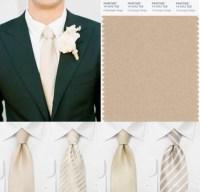 Champagne Color Tie - Erieairfair
