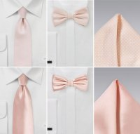 Wedding Color Ideas in Blush and Ivory | Groomsmen Ties in ...
