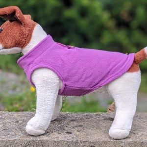 purple dog jumper
