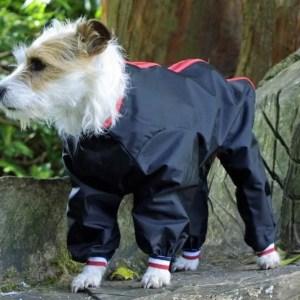 Dog Waterproof Trouser Suit