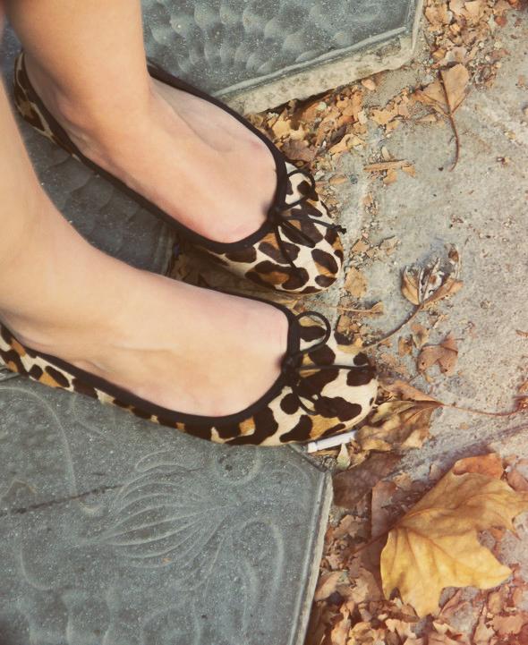ballerines zara leopard