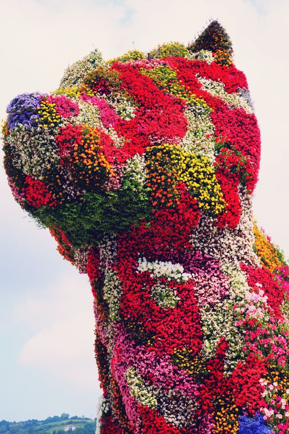 guggenheim perro dog flowers bilbao_effected