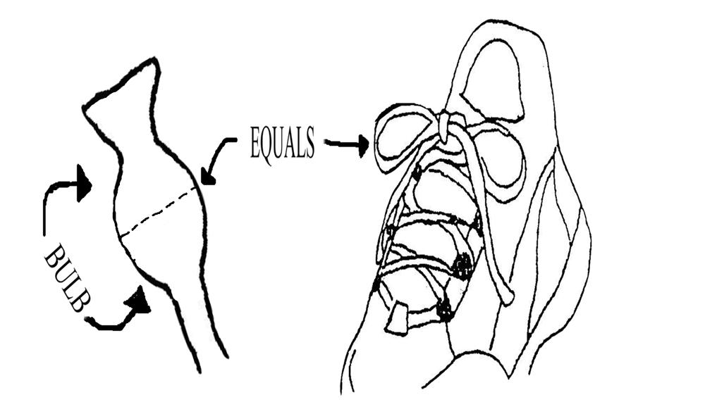 Bow Tie Tying Diagram