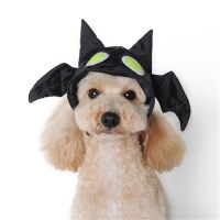 Bat Dog Hat, Dog Hat, dog Halloween costumes, dog hats