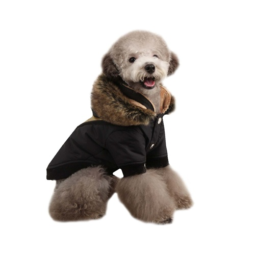 Soothing Hooded Dog Coat from BowWowsBest.com