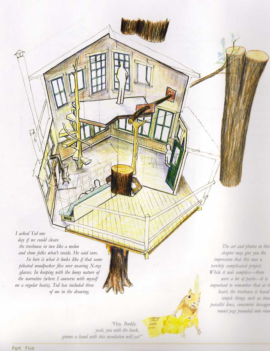 Interior Tree House, from Treehouse Chronicles