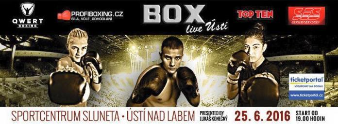 Box-Gala am 25. Juni 2016 in Usti nad Labem