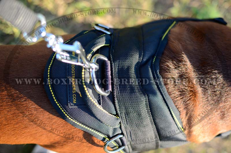 All Weather Boxer Dog Harness For Tracking And Pulling H6