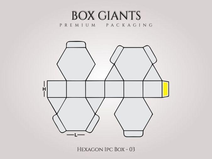 Custom Printed Hexagon 1 PC Boxes