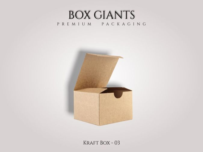 Custom Printed Kraft Boxes