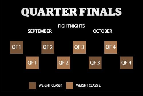 World Boxing Super Series Quarter Finals