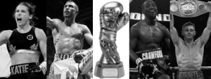 2017 Fighter of the Year