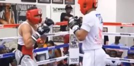 Sparring Footage Of Gervonta Davis
