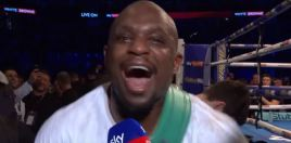 People Are Arguing Over Boxing KO of The Year 5 Nominees