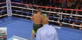 Video Shows All 42 Power Punches Loma Landed On Pedraza In Round 11