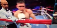 The Moment Amir Khan Was Stopped By Terence Crawford