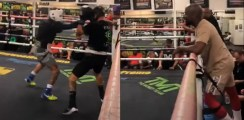 gervonta davis beats up sparring partner as mayweather looks on