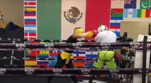 Canelo Sparring Video Ahead Of First Fight Of 2021