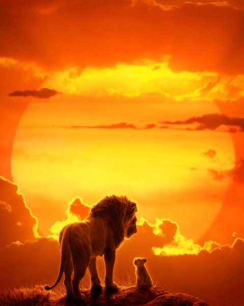 the lion king set