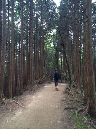 金剛山登山道02