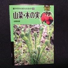 「新 ヤマケイポケットガイド④ 山菜・木の実」書評!