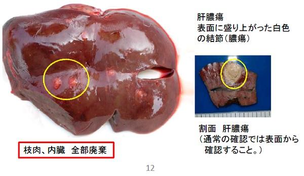 エゾシカ衛生処理マニュアル
