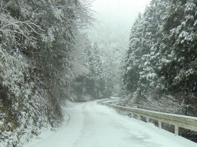 3月の積雪