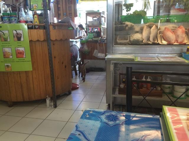 タイ屋台厨房