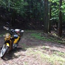クロスカブ×オフロード。猟場候補の林道を探索してみた