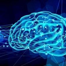 誤射事故防止のために。ハンターが知っておくべき目の錯覚と脳の話。