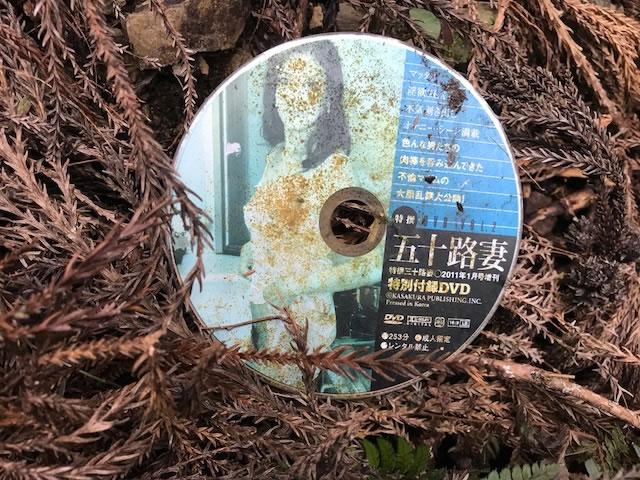 山で見つけたヘンなもの DVD