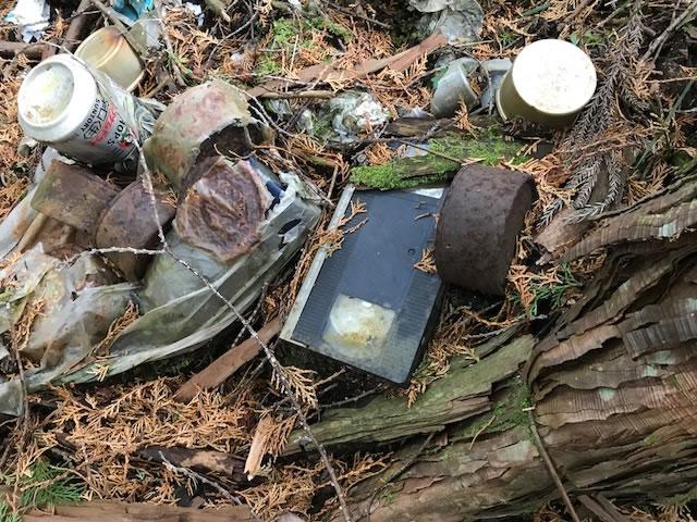 山で見つけたヘンなもの VHS