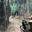 クロスカブで行こう!猟場の新規開拓&林道ツーリング2018