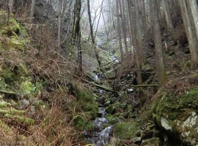 狩猟ヒヤリハットその12 沢と膝と倒木と